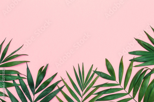 Tropical composition background