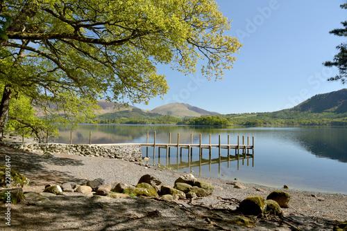 Fototapeta Shore of Derwentwater near Keswick, Lake District