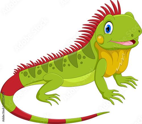 Fototapeta premium Ilustracja wektorowa cute iguana kreskówka na białym tle