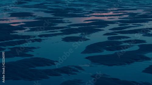Canvas Print maree basse
