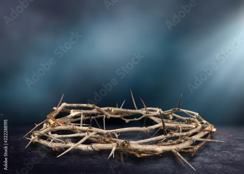 Cuadros en Lienzo Crown of Thorns