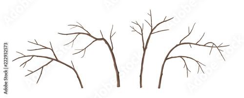 Obraz na płótnie Vector Tree Branches