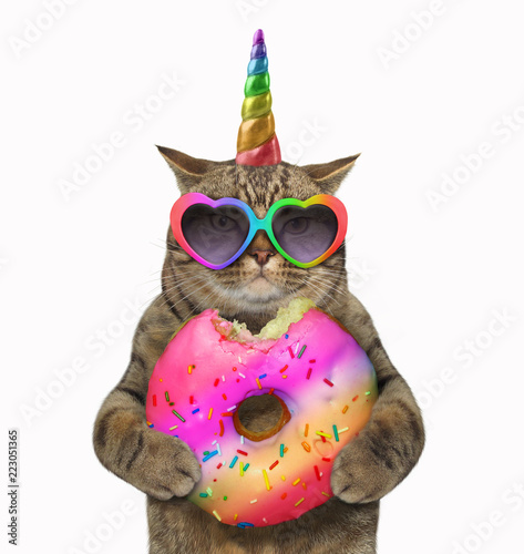 The cat unicorn is eating a big bitten rainbow donut White background.
