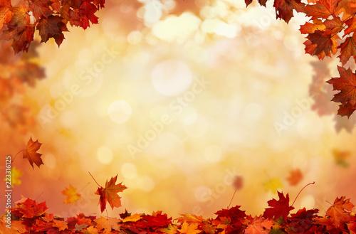 Piękny krajobraz . Kolorowe liście w parku. Spadające liście naturalne tło.