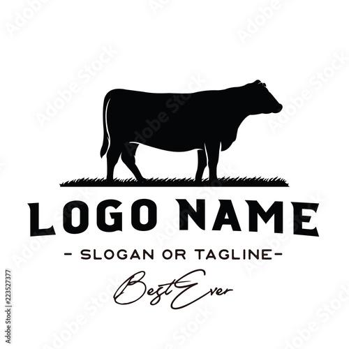 Fototapeta Vintage Cattle / Beef logo design inspiration vector