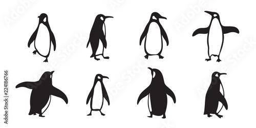 Carta da parati penguin vector icon logo cartoon character fish salmon illustration doodle