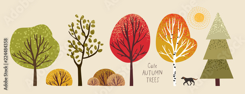 autumn trees, set of vector illustrations of cute trees and shrubs: oak, birch, aspen, linden, fir, sun and dog