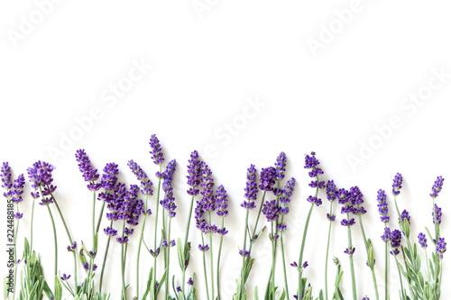 Fototapeta premium Kompozycja kwiatów. Rama robić świezi lawendowi kwiaty na białym tle. Lawenda, kwiatowy tło. Leżał płasko, widok z góry, miejsce kopiowania