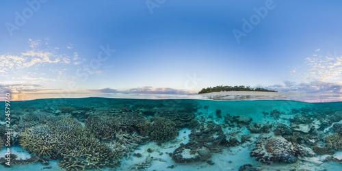Carta da parati Island with coral reef