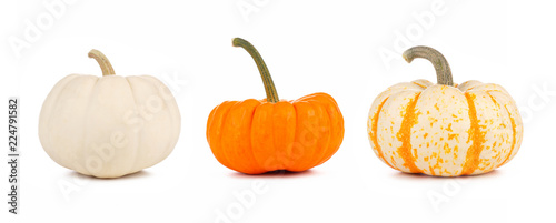 Assortment of autumn pumpkins isolated on a white background. White, orange and striped.