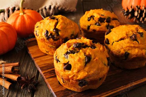 Autumn pumpkin chocolate chip muffins. Close up table scene on a dark wood background.