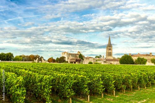 Fotografie, Tablou Vineyards of Saint Emilion, Bordeaux Wineyards in France