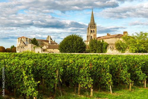 Billede på lærred Sunny landscape of bordeaux wineyards in Saint Emilion in Aquitaine region, Fran