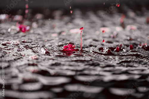 Canvas Print goutte de vin magique dans le pressoir