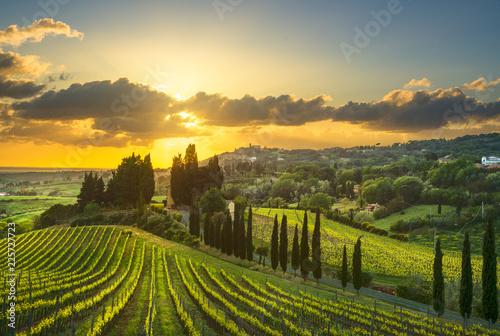 Fototapeta premium Wioska Casale Marittimo, winnice i krajobraz w Maremma. Toskania, Włochy.