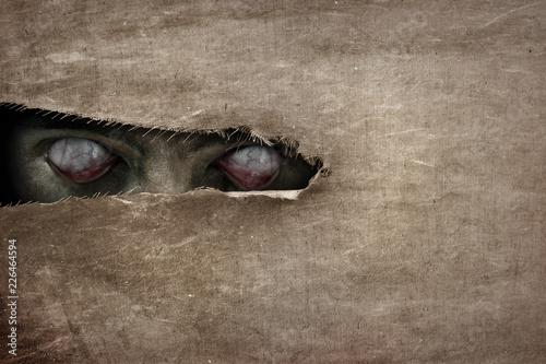 Fotografia Devil eyes peeking