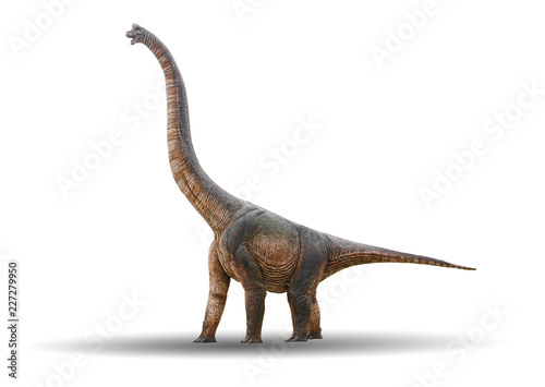 Foto Sauropod Dinosaur is made of cement isolated on a white background with clipping
