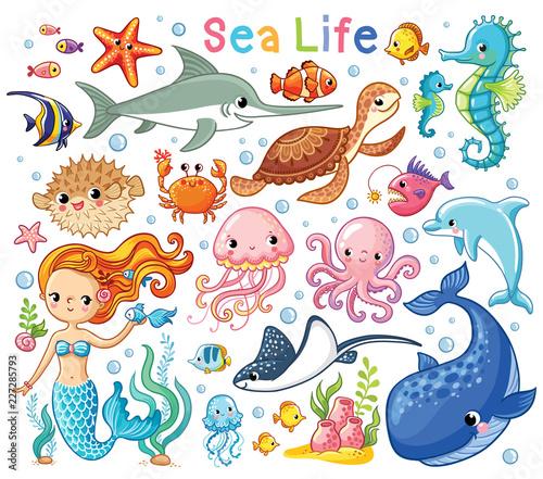 Fototapeta premium Wektor zestaw ze zwierzętami morskimi i syreną. Kolekcja mieszkańców morskich w stylu kreskówek dla dzieci.