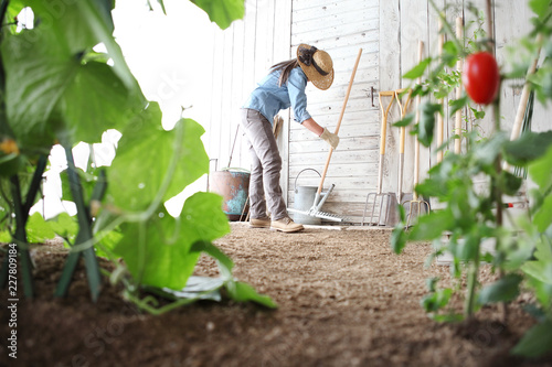 Fotografia woman in the vegetable garden with rake from the wooden wall of tools, healthy o
