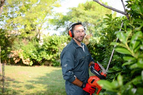 Canvastavla handsome young man gardener trimming hedgerow in a garden park outdoor