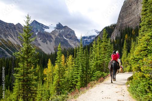 秋のカナディアンロッキー レイク・アグネス・トレイルでの乗馬 レイク・ルイーズ周辺(バンフ国立公園 カナダ・アルバータ州) Fototapet
