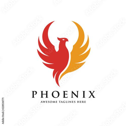 Fototapeta premium luxury phoenix logo concept, best phoenix bird logo design