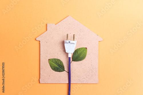 House symbol with plug like a plant. Save energy concept.