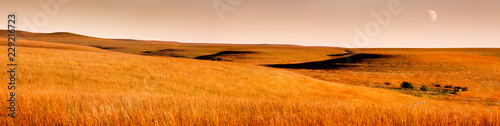 Obraz na plátně Beautiful Kansas Tallgrass Prairie Preserve Panoramic Scene with moon