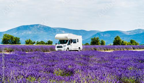 Fotografia Motorhome in a lavender field in Provence, France