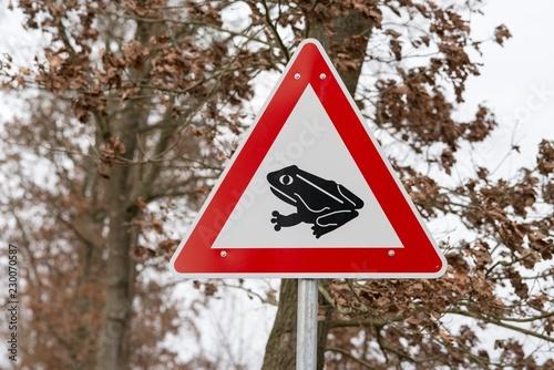 Fototapeta premium Znak drogowy wędrówki ropuch / wędrówki płazów, ropuchy i żaby przechodzą przez ulicę, ochrona gatunkowa, dąb szypułkowy (Quercus robur) wczesną wiosną, Niemcy, Europa