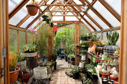 Canvastavla Greenhouse interior