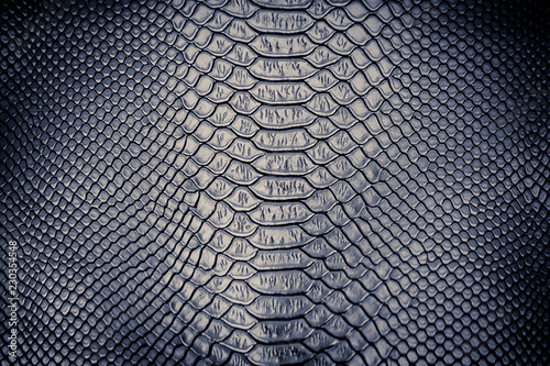 Fotografia Luxury snake skin texture