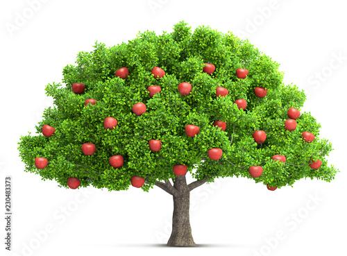 Fototapeta red apple tree isolated 3D illustration