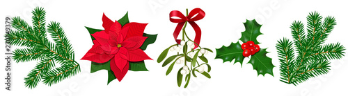 Stampa su Tela Set with Poinsettia, Holly berry, Mistletoe with berries and red bow, fir branch