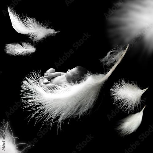Fototapete Newborn baby sleeping on feather