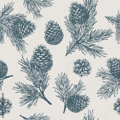 Fototapeta Pine cones seamless pattern