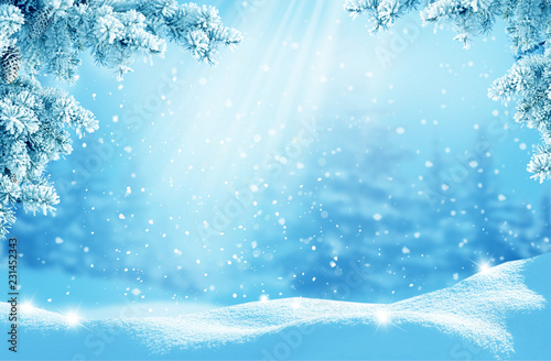 Merry Christmas and happy new year greeting card. Winter landscape with snow .Christmas background with fir tree branch
