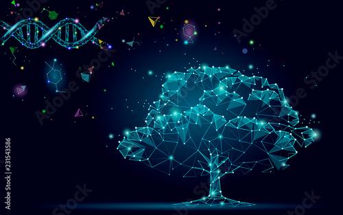 Fototapeta DNA evolution abstract tree
