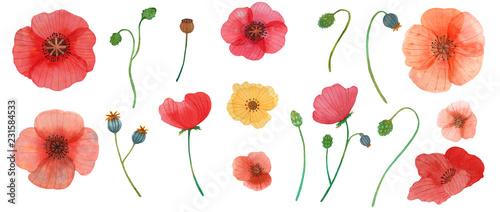 Obraz na plátně wild flowers poppy watercolor pattern illustration seamless