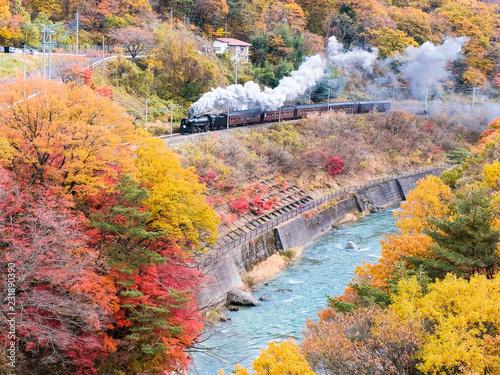 秋の諏訪峡とSL