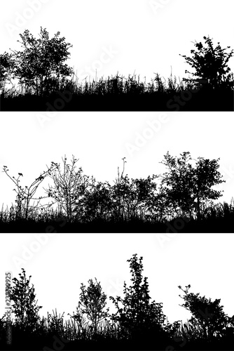 Obraz na płótnie Realistic grass and bush with leaves silhouettes from nature on white background (Vector illustration)