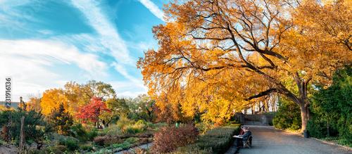 Fotografia, Obraz Fort Tryon Park, New York City. USA