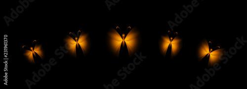 Fotografia Shiny golden line butterflies on the black background
