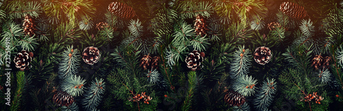 Holiday background of Christmas tree branches, spruce, juniper, fir, larch, pine cones with light. Xmas and New Year theme. Top view, wide composition, seamless pattern