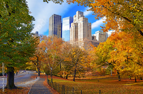 Canvas Autumn foliage in Central Park, New York