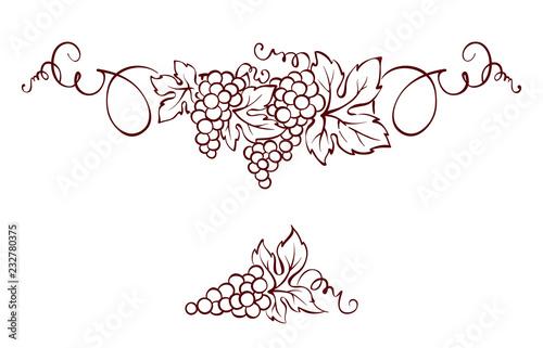 Wallpaper Mural Grapes / Vector illustration, vintage design element