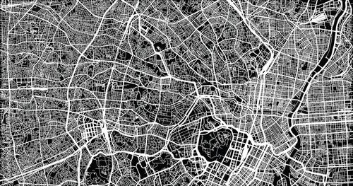 Fototapeta Urban vector city map of Tokyo, Japan