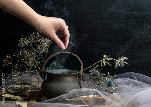 Obraz na plátně Magic pot with herbs and witchcraft