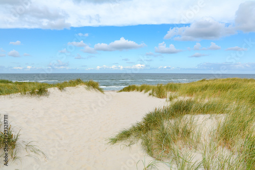Canvas Print View on the beautiful landscape with beach and sand dunes at the North Sea, Jutl