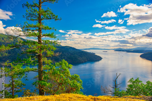 Canvas Print Scenic view of Maple Bay in Vancouver Island, BC